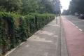 062-kokowall-noise-barrier-Zoetermeer